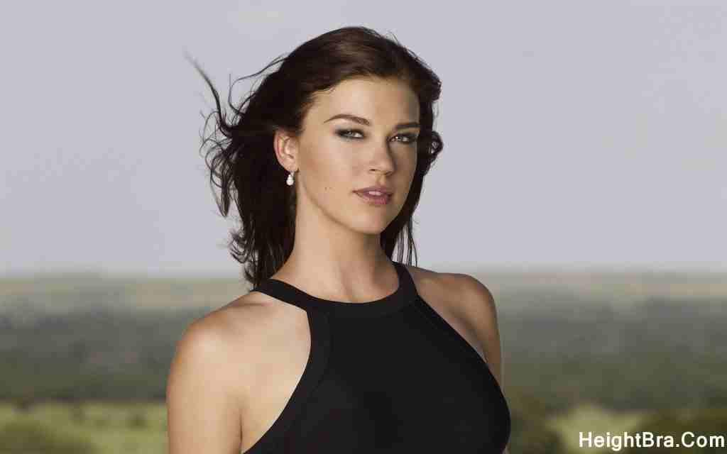 Adrianne Palicki Breast Size