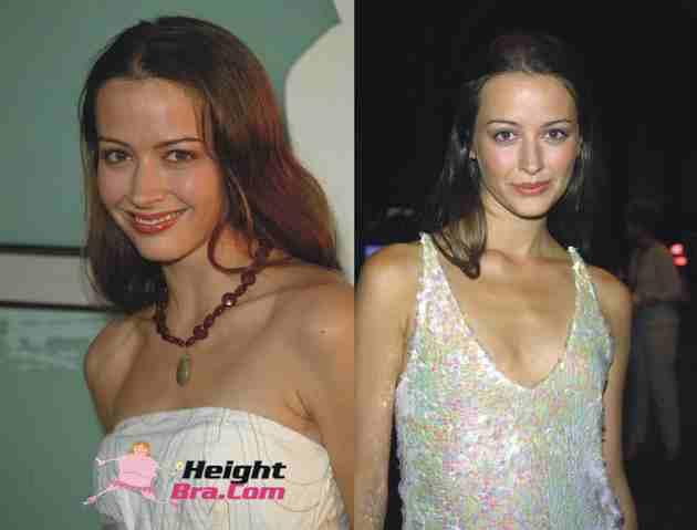 Amy Acker Hot Dresses