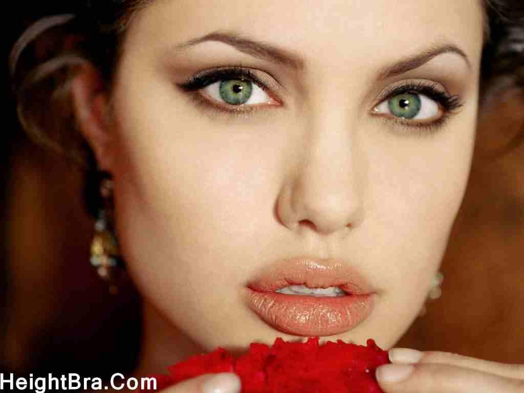 Angelina Jolie Beautiful Closeup Face