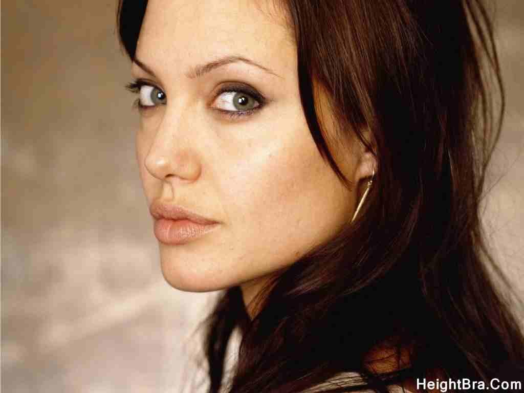 Angelina Jolie Bio