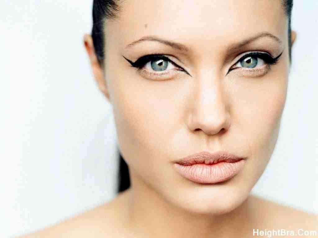 Angelina Jolie Boobs Size
