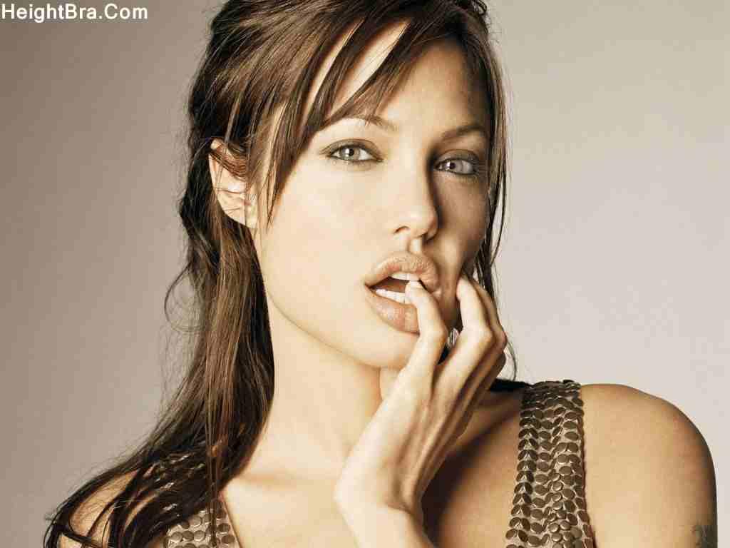 Angelina Jolie Breast Size