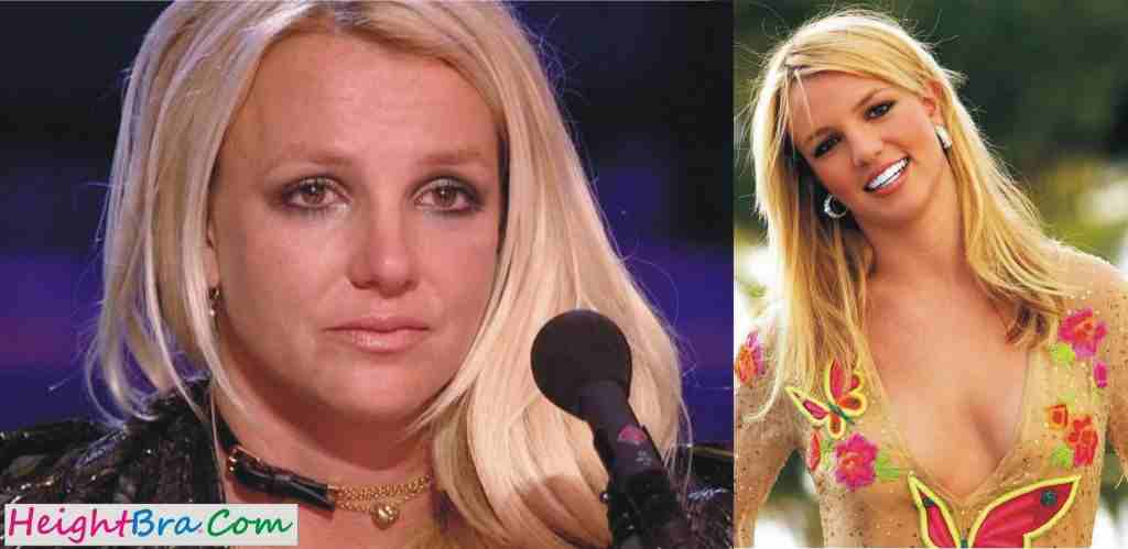 Britney Spears Waist Figure