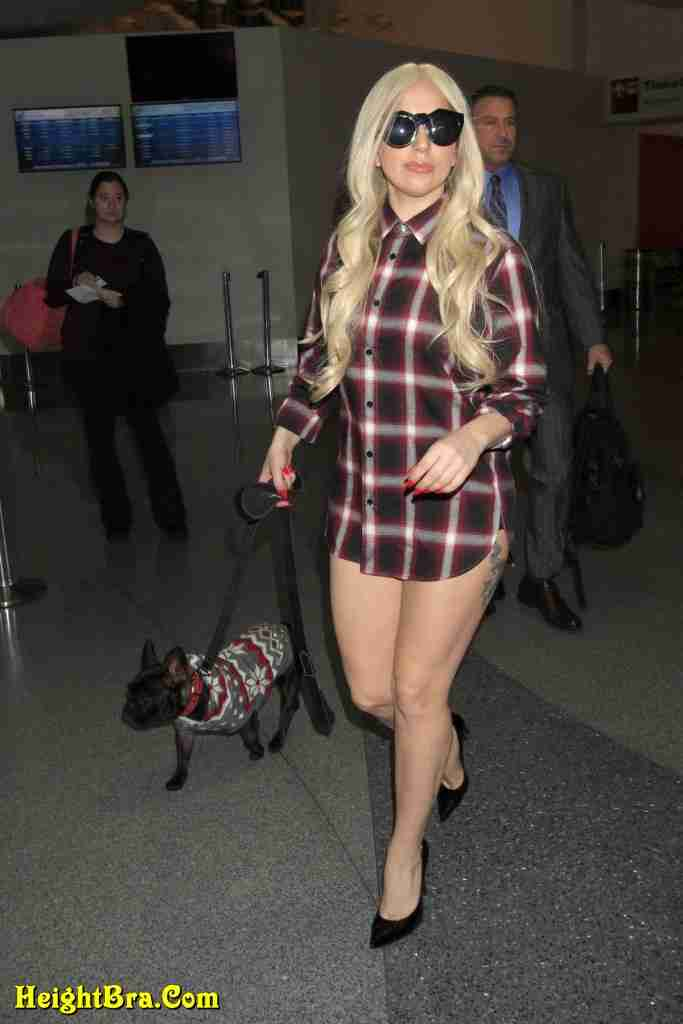 lady gaga pics at lax airport with her pet